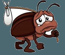 Борьба жуками в Самаре