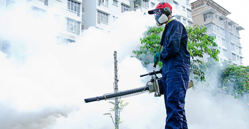 Уничтожение насекомых в Коломне