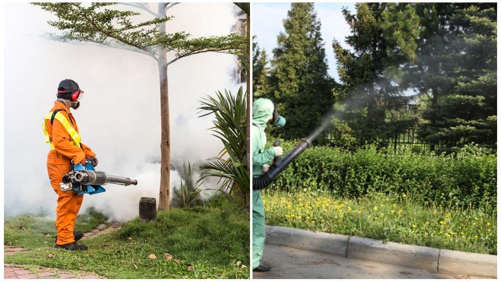 обработка холодным дымом от комаров